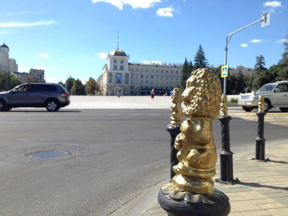 Львы заполонили улицы Белгорода, фото-5