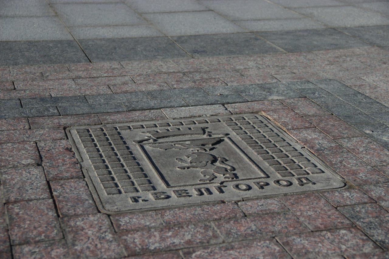 Львы заполонили улицы Белгорода, фото-13