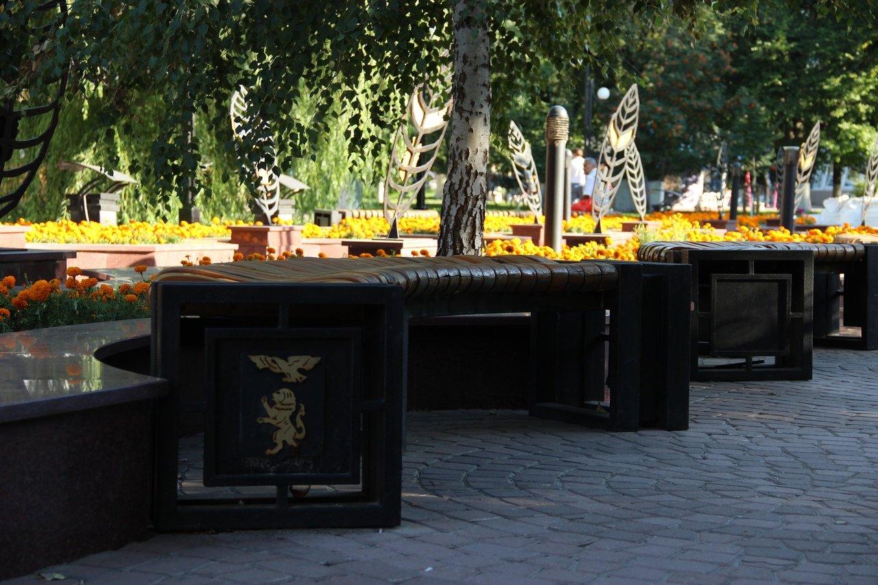 Львы заполонили улицы Белгорода, фото-4