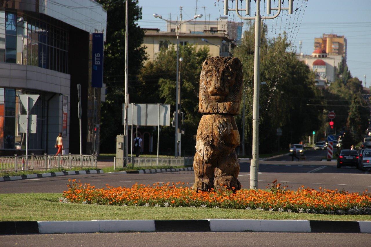Львы заполонили улицы Белгорода, фото-9