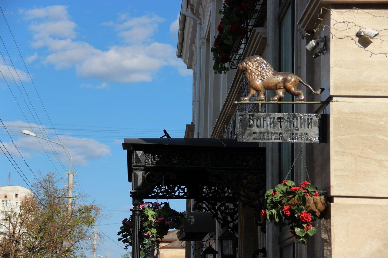 Львы заполонили улицы Белгорода, фото-2