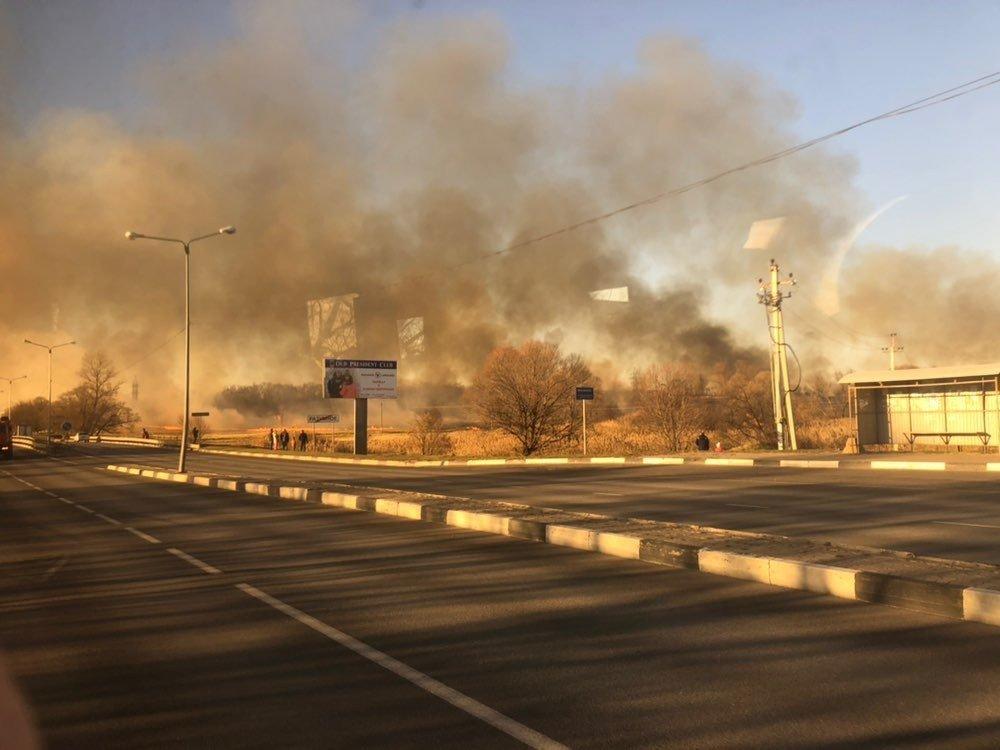 Белгородские пожарные потушили горящие поля в Разумном, фото-1