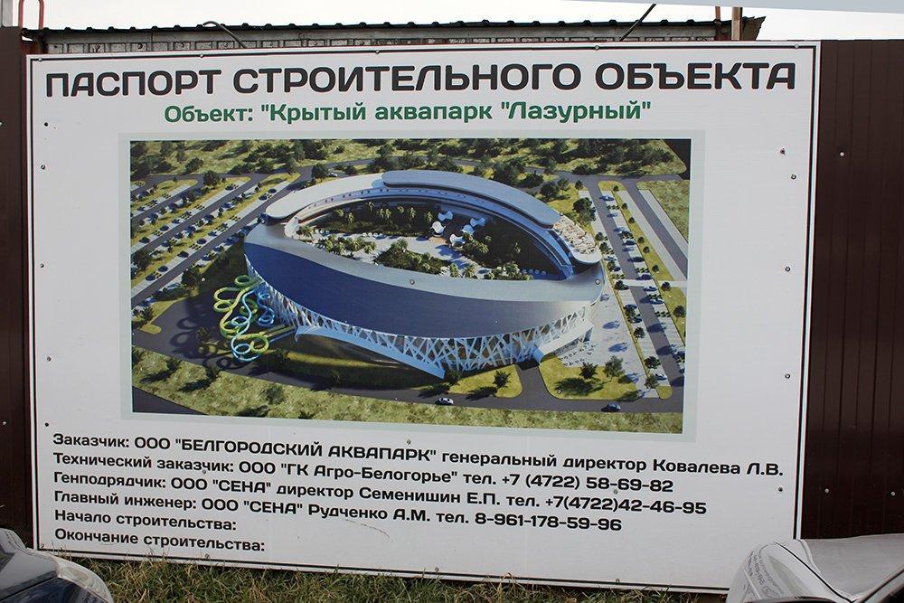 «Страна чудес». Владимир Зотов рассказал об уникальном проекте аквапарка, фото-1