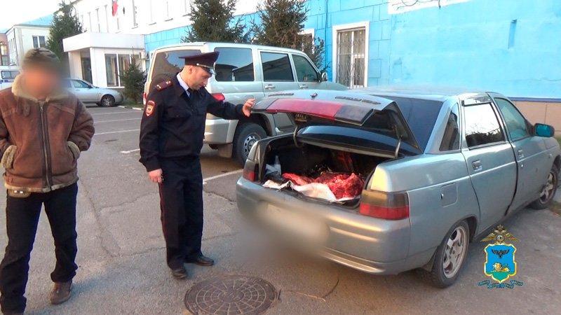 Под Белгородом браконьеры застрелили самку благородного оленя, фото-1