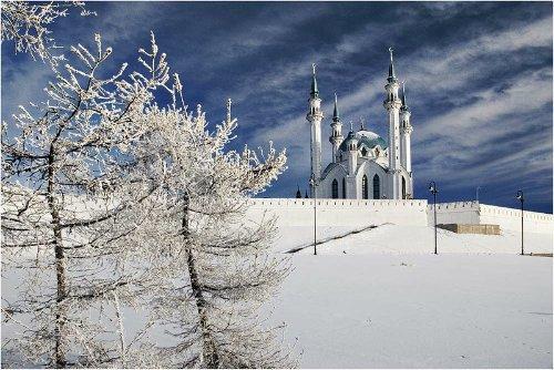 Беловежская пуща или секреты Востока? Куда отправиться на новогодние каникулы?, фото-2