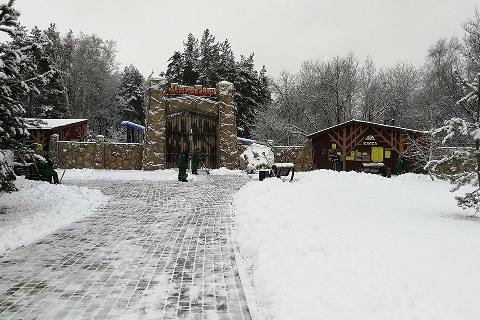 Белгородских динозавров укутали в зимние одежды , фото-1