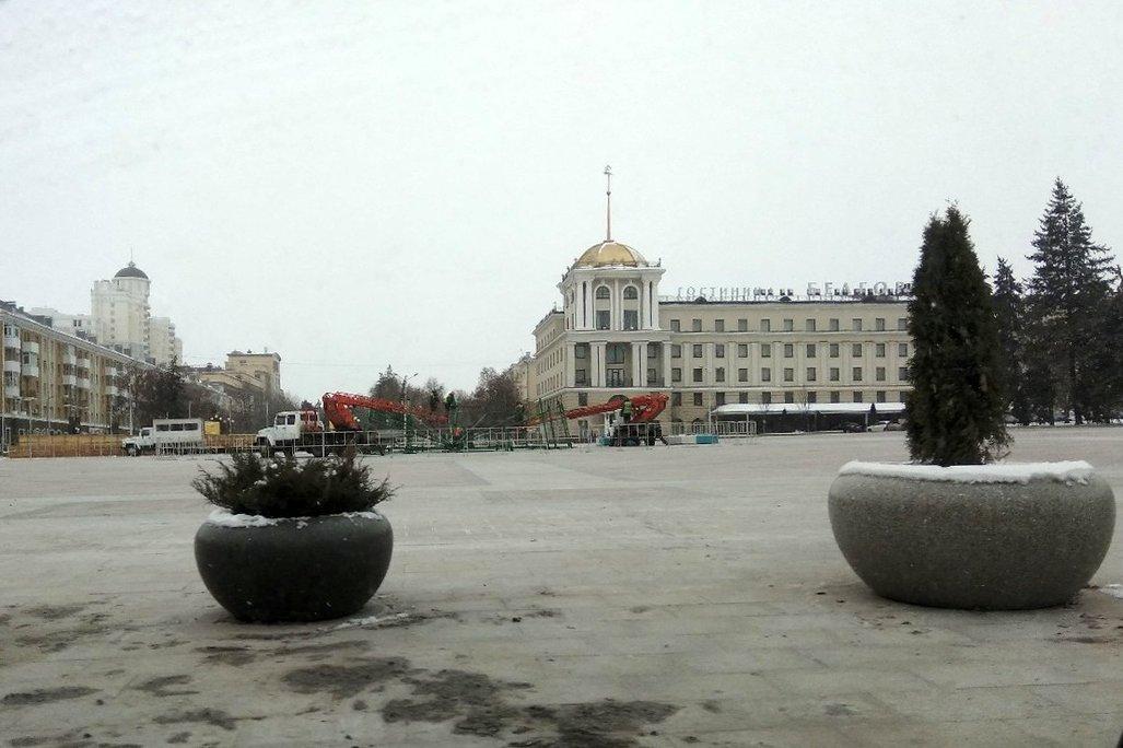 На Соборной площади Белгорода устанавливают новогоднюю ёлку , фото-2