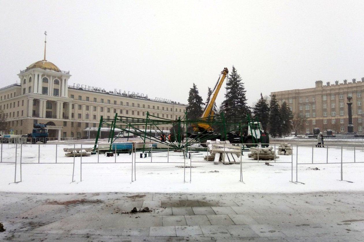 На Соборной площади Белгорода устанавливают новогоднюю ёлку , фото-4