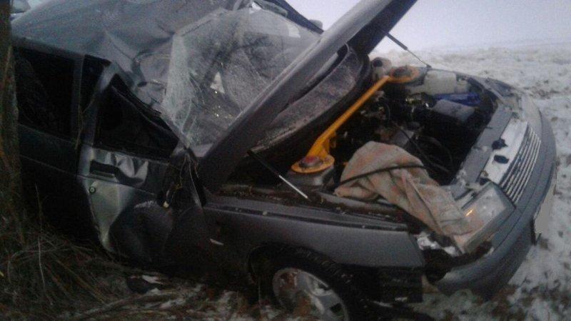 В Губкине водитель иномарки врезался в дерево, фото-1
