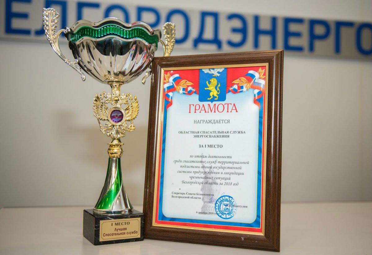 Служба гражданской обороны Белгородэнерго признана лучшей среди предприятий региона, фото-1