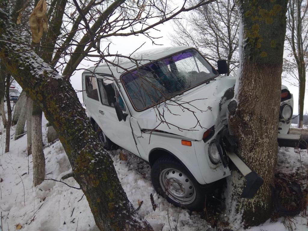 Под Губкиным водитель автобуса сбил пешехода: мужчина погиб, фото-1