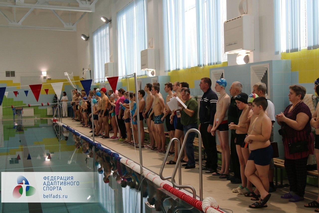 В Белгороде прошёл Чемпионат области по плаванию среди спортсменов с ОВЗ, фото-2