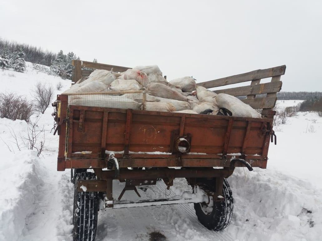 Белгородцы на тракторе попытались провезти в Россию четыре тонны мяса, фото-4