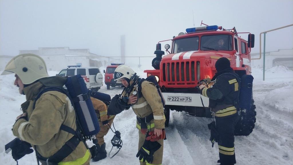 В Разумном произошёл пожар на птицефабрике, фото-3