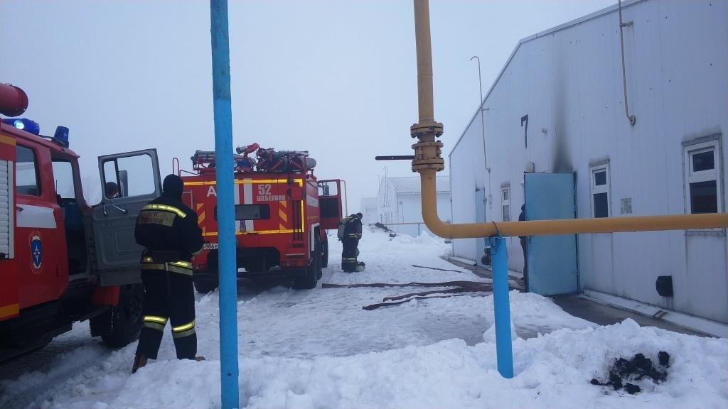 В Разумном произошёл пожар на птицефабрике, фото-4