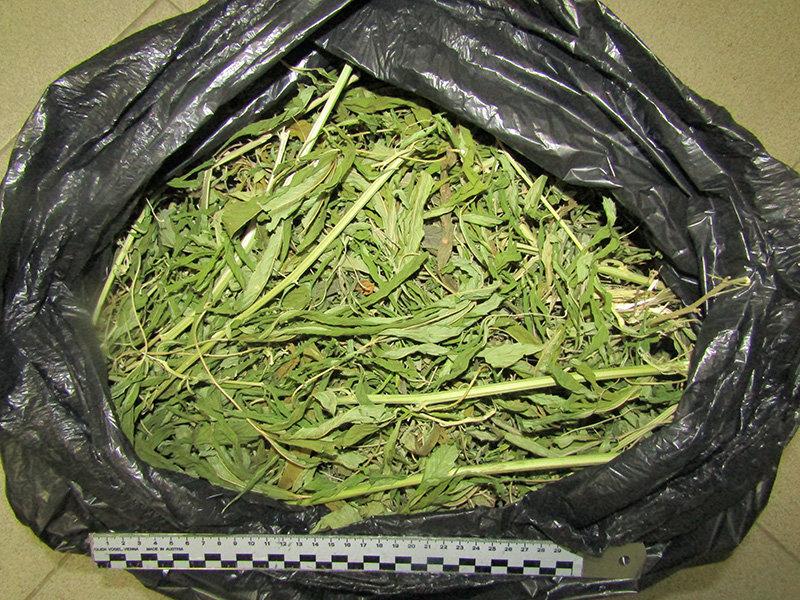 В Старом Осколе задержали банду наркоторговцев, фото-3