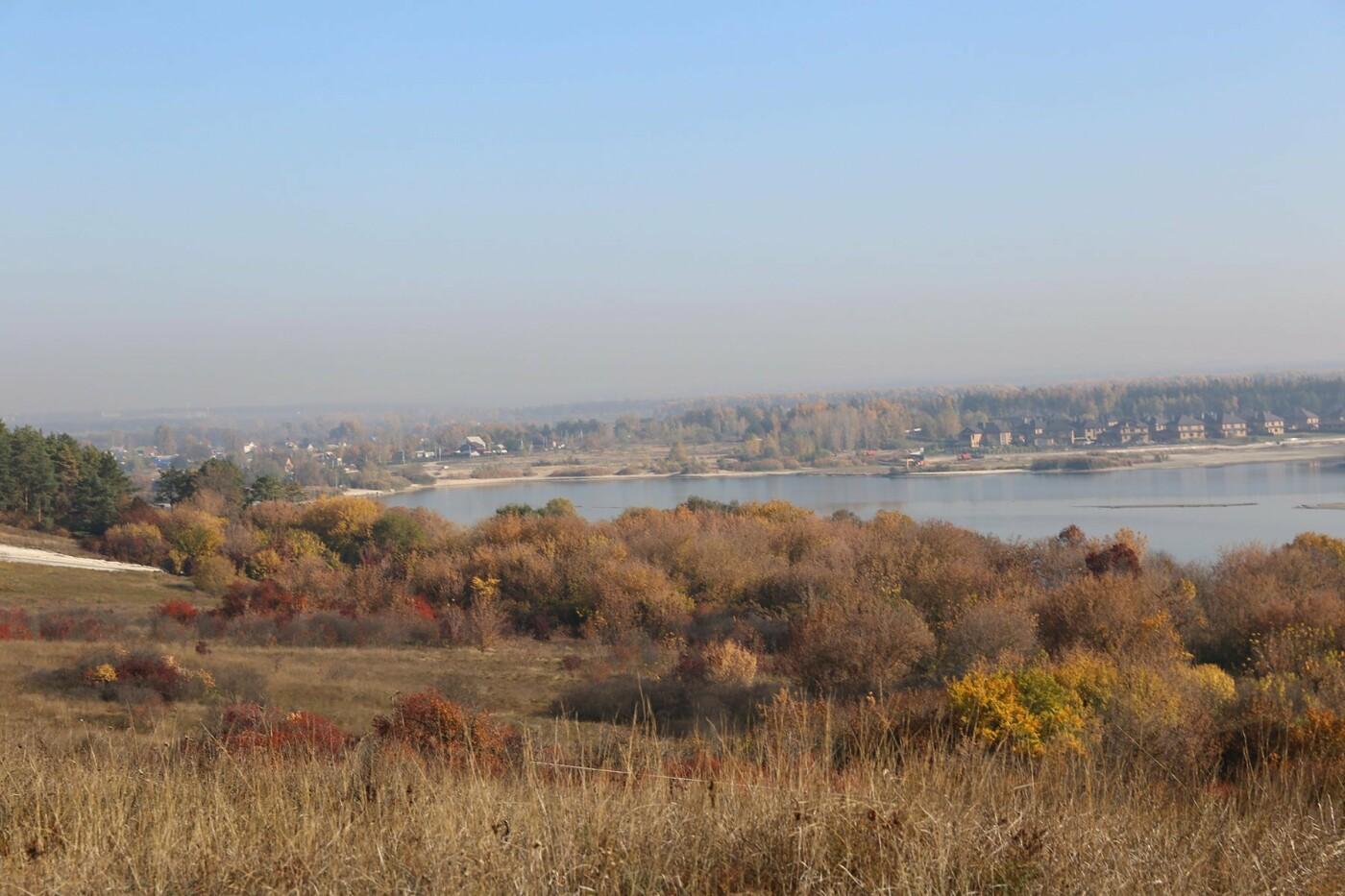 Белгородцам предлагают придумать концепцию будущего парка «Муромский лес», фото-1