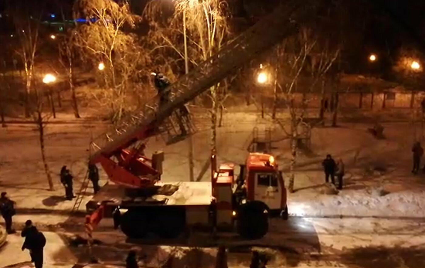 Белгородские спасатели сняли кошку с высокого дерева, фото-1, Фото пресс-службы ГУ МЧС по Белгородской области