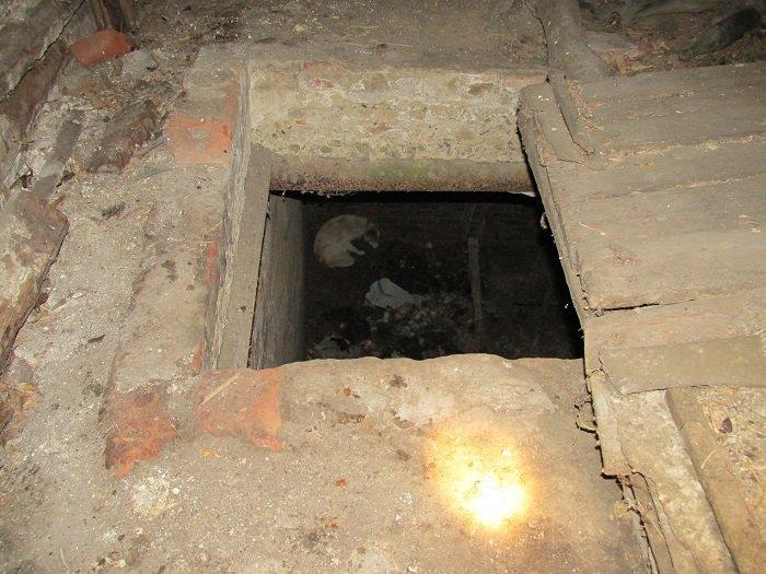 В Ивнянском районе спасли провалившуюся в подвал собаку, фото-2