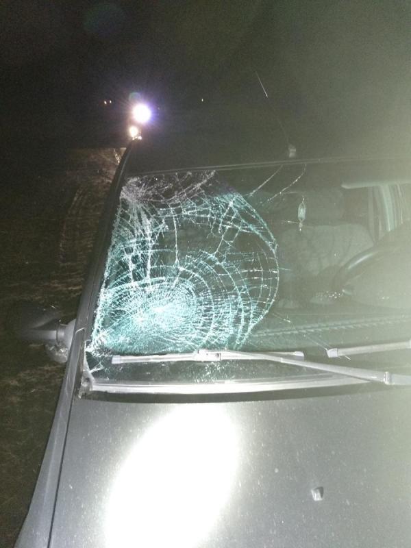 В Губкине пожилой водитель устроил ДТП с четырьмя машинами, фото-2