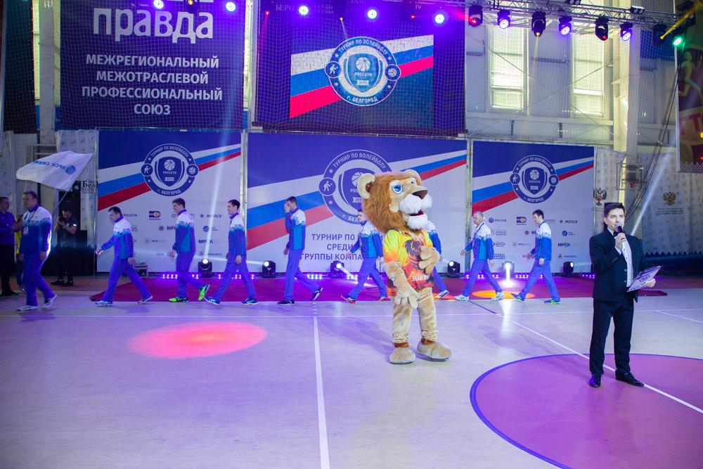 На два дня главной волейбольной площадкой электросетевого комплекса страны стал Белгород, фото-4