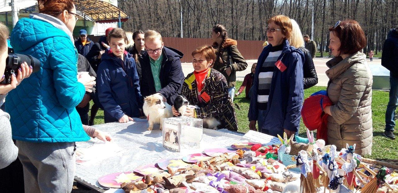 Выставка-раздача собак в Белгороде