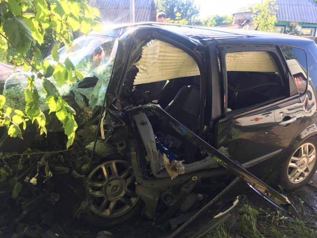 Под Белгородом иномарка на полном ходу влетела в дерево, фото-2