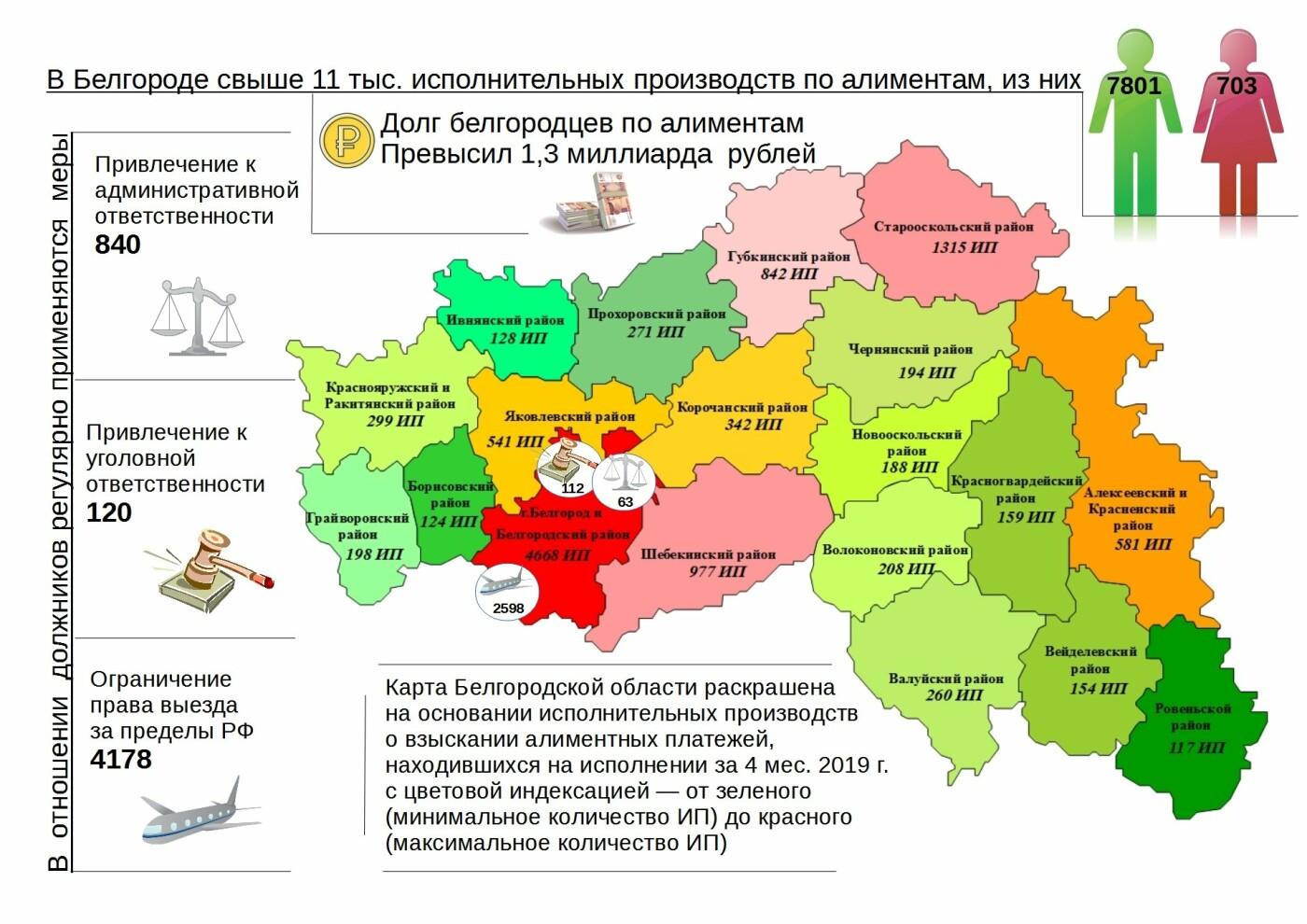 Белгородские приставы назвали муниципалитеты с наибольшим числом алиментщиков, фото-1