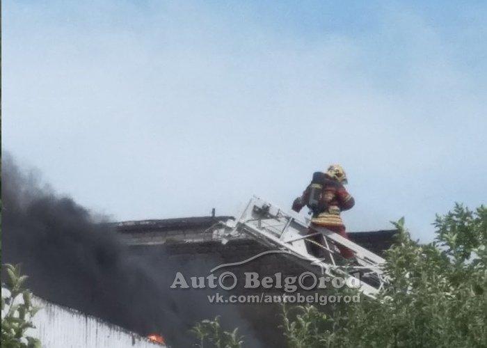В Белгороде потушили пожар на складе, фото-3