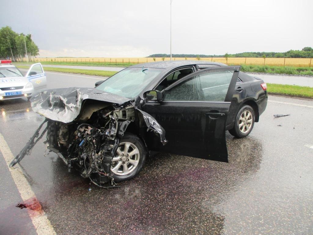 Под Корочей разбился водитель скутера, фото-2