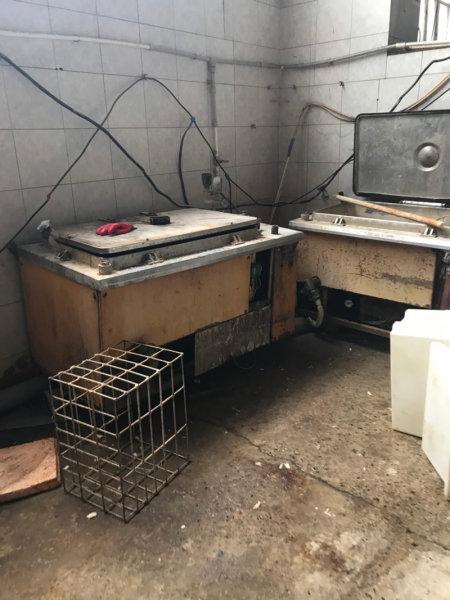 В Белгороде обнаружили подпольный цех по переработке морепродуктов, фото-1