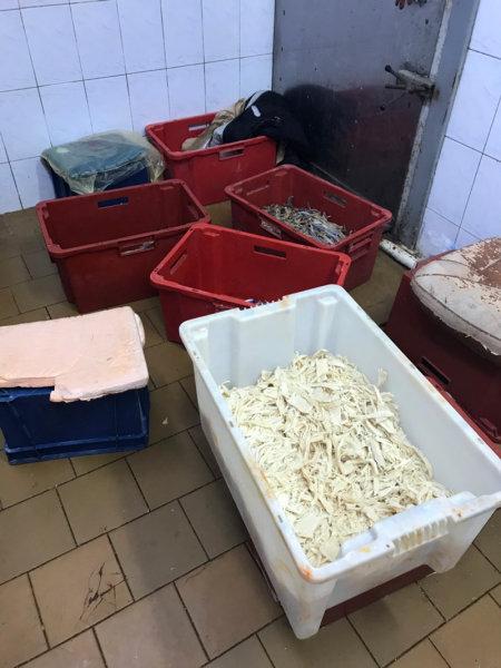 В Белгороде обнаружили подпольный цех по переработке морепродуктов, фото-9