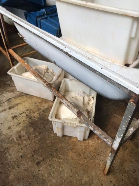 В Белгороде обнаружили подпольный цех по переработке морепродуктов, фото-5