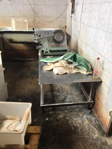 В Белгороде обнаружили подпольный цех по переработке морепродуктов, фото-4