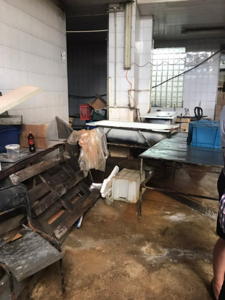 В Белгороде обнаружили подпольный цех по переработке морепродуктов, фото-3
