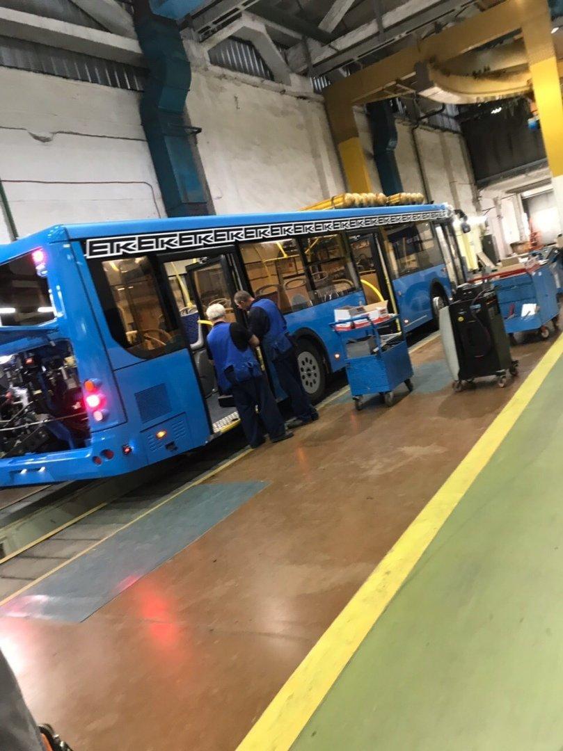 На улицах Белгорода появятся 30 новых синих автобусов, фото-2