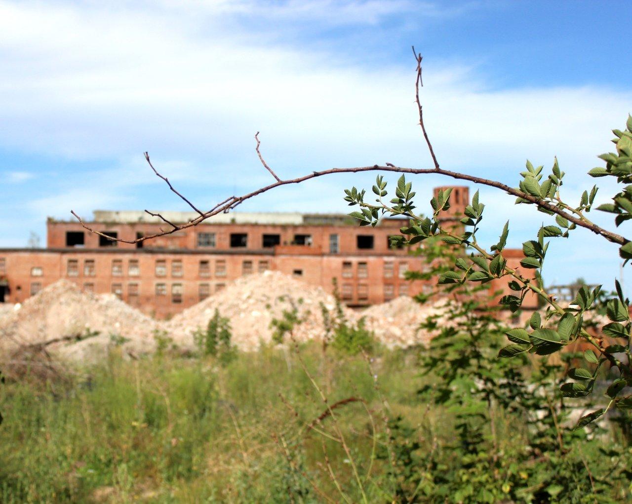 Шебекинский химический завод ждёт реновация, фото-5
