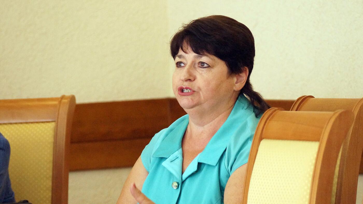 «И как въехать в дом, если нет дороги?» Белгородские депутаты обсудили проблемы ИЖС в регионе, фото-1
