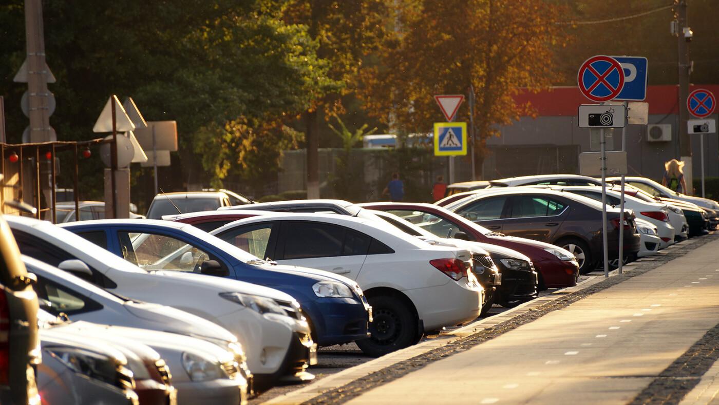 Школы, дороги, автопарк губернатора. На что добавят денег в бюджете Белгородской области, фото-2