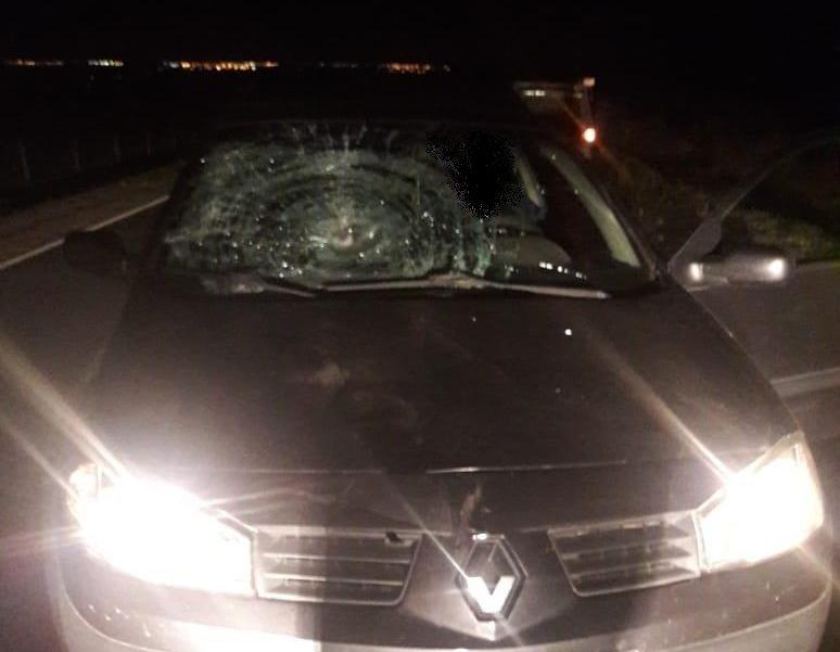 Под Белгородом иномарка сбила женщину, фото-2
