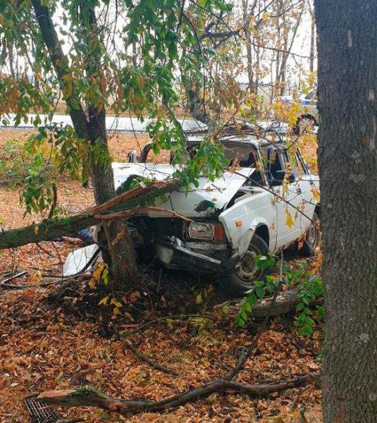 В Корочанском районе погиб водитель врезавшего в дерево ВАЗа, фото-1