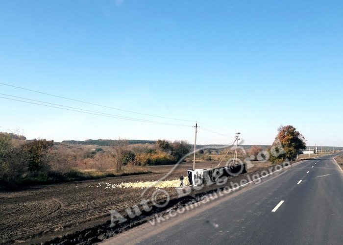В Яковлевском районе перевернулась фура с кабачками, фото-2