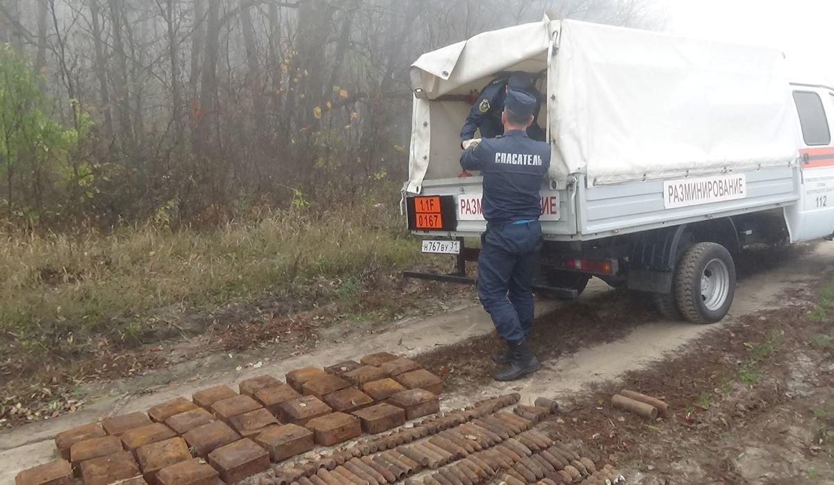 В Шебекинском районе нашли схрон с боеприпасами, фото-3