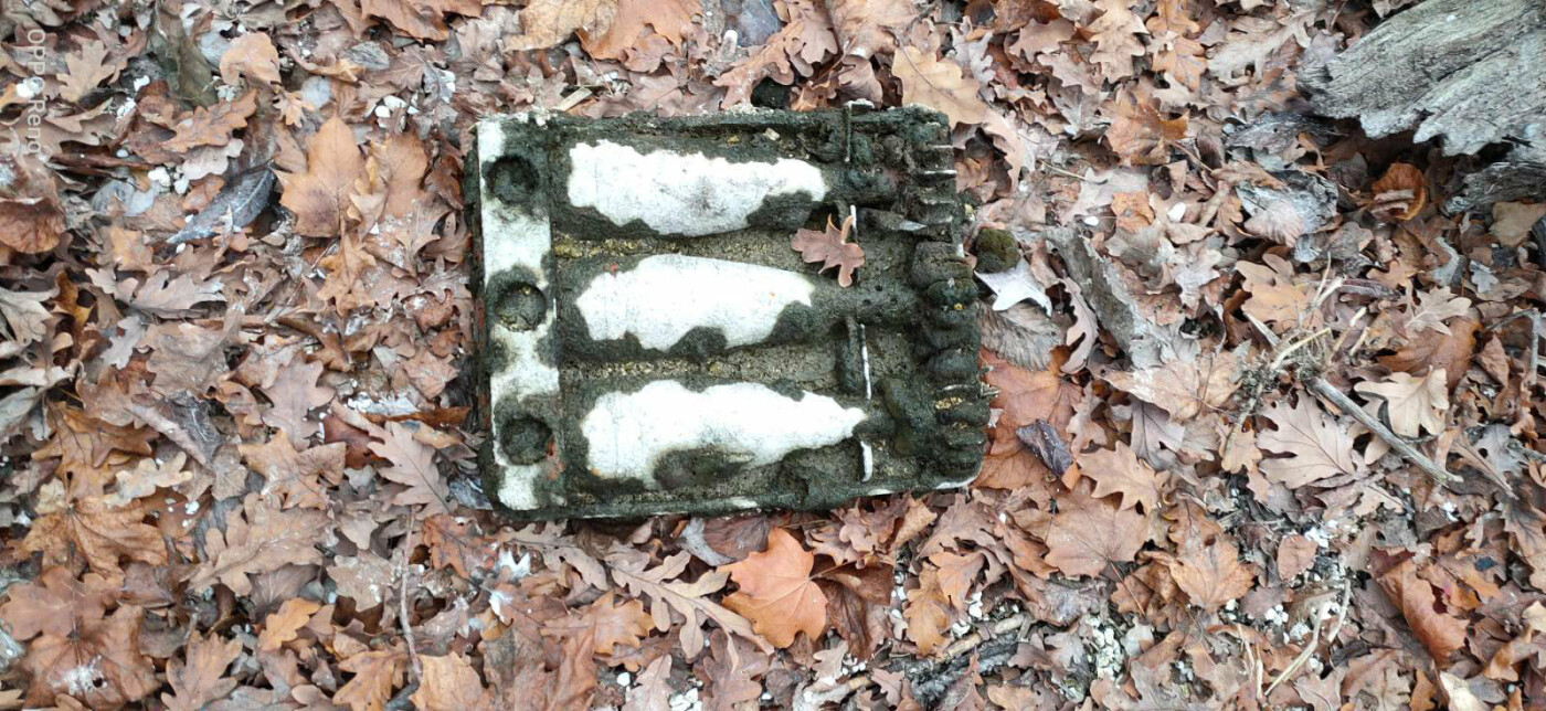 На берегу Белгородского водохранилища подростки нашли немецкие мины, фото-1