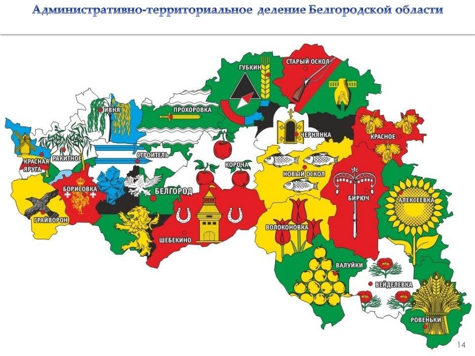 Владимир Боровик: Повышение зарплат учителям обойдётся бюджету области в 3,8 миллиарда рублей, фото-23