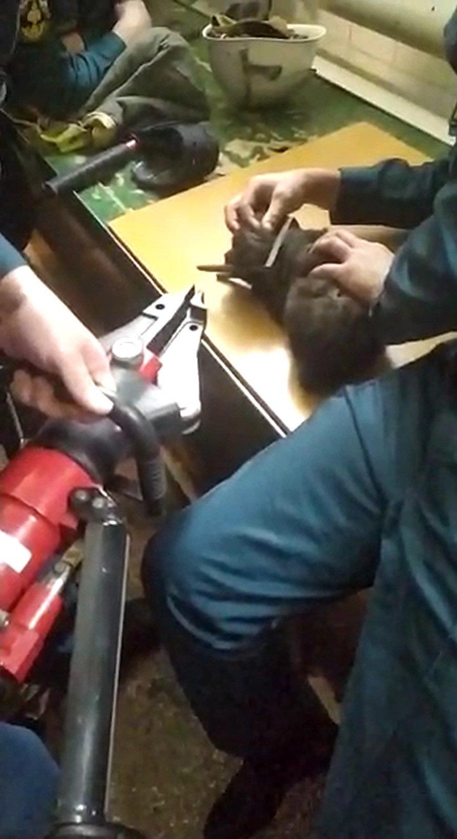 В Старом Осколе спасли застрявшего в металлической петле щенка, фото-3
