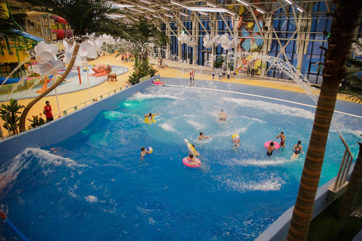 Евгений Савченко: Теперь у Белгородской области есть свой аквапарк, фото-6, Фото: пресс-служба губернатора и правительства Белгородской области
