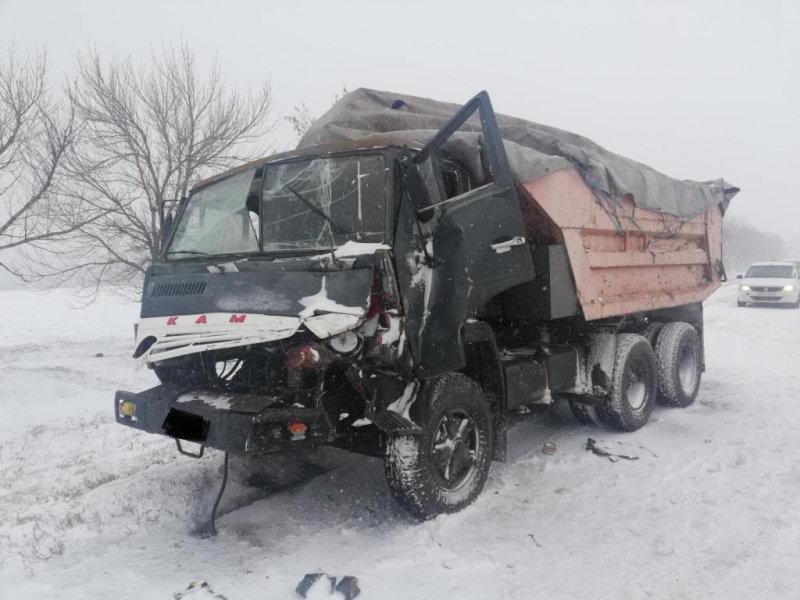 Под Белгородом в ДТП с автобусами пострадали две девочки, фото-2