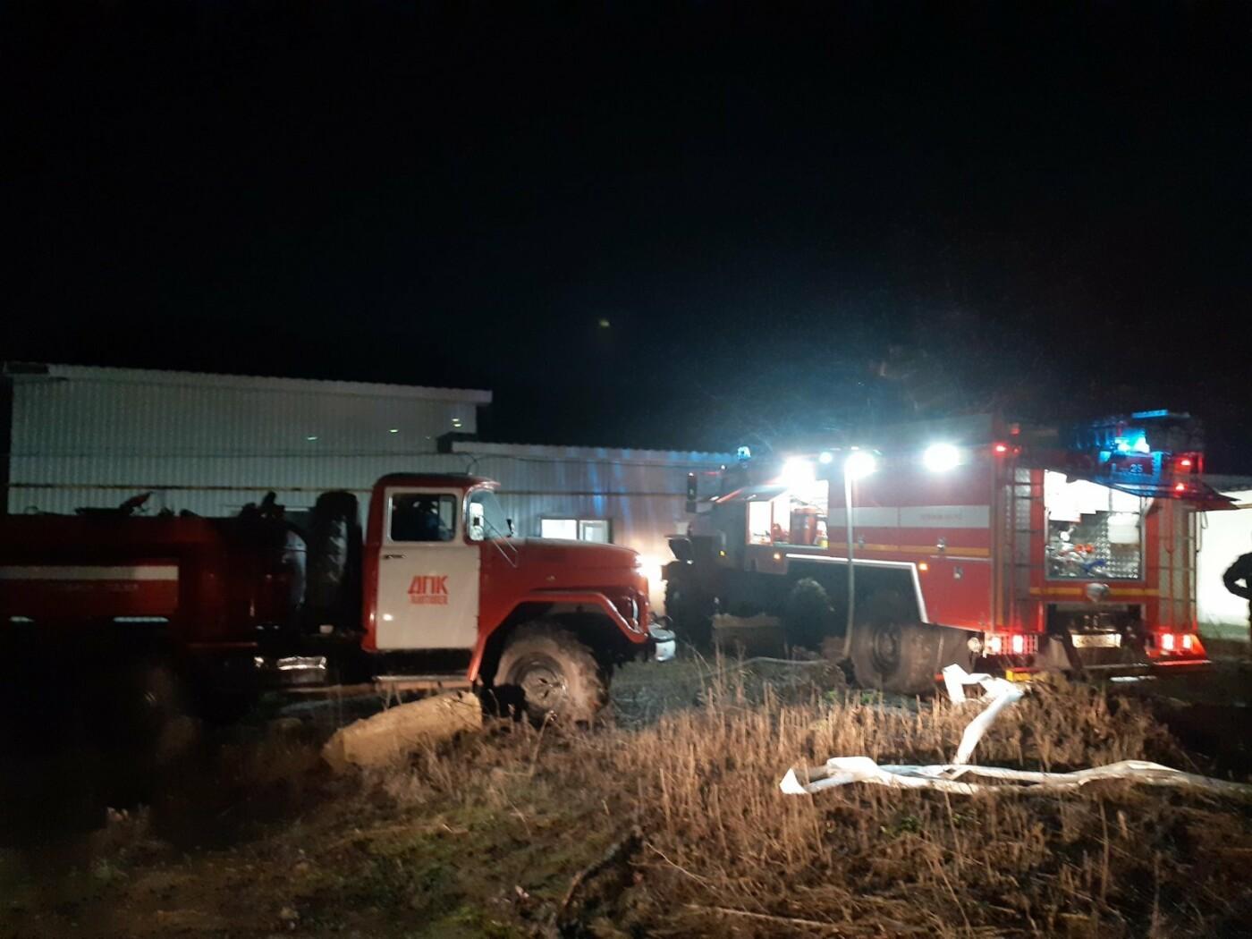В Белгородской области ночью горел свинокомплекс, фото-2, Фото: пресс-служба Главного управления МЧС по Белгородской области