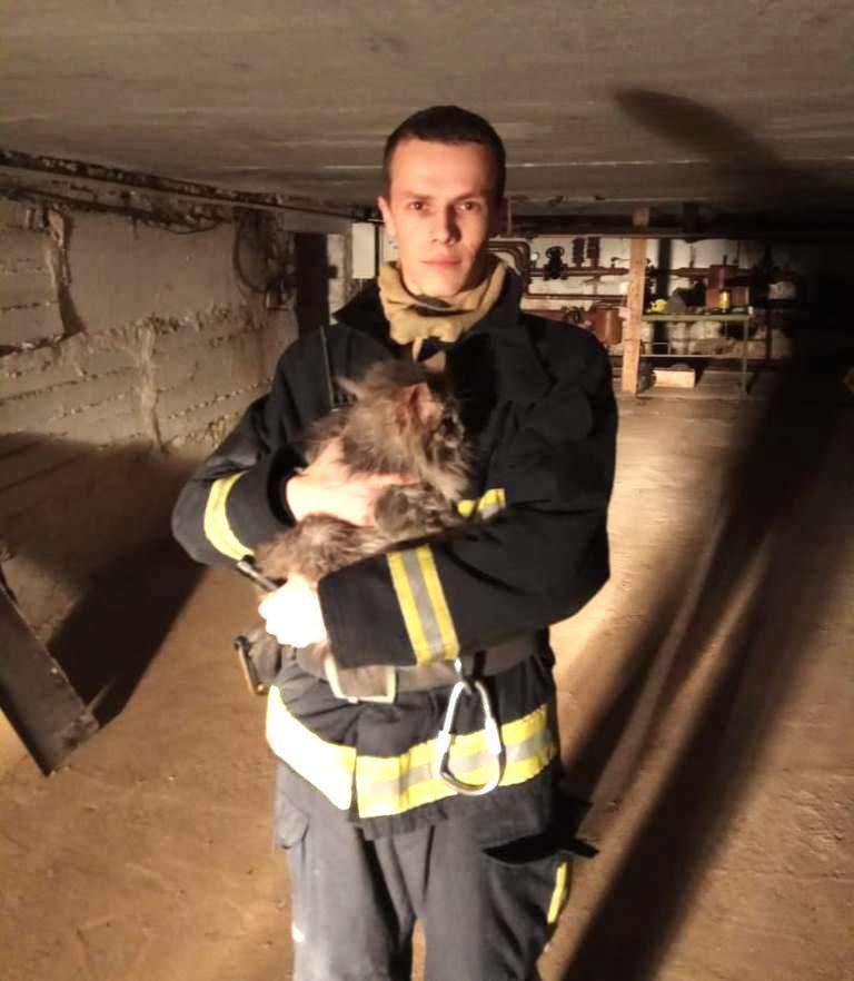В Губкине пожарные спасли кошку, застрявшую в трубе, фото-2, Фото: пресс-служба Главного управления МЧС по Белгородской области